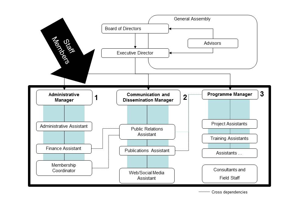 Organizational Structure Of An Ngo