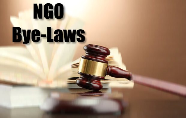 Constituting a Constitution A sample set of NGO ByeLaws – Ngo Bylaws Template